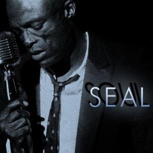 Soul (Seal album) - Image: Soul (album)