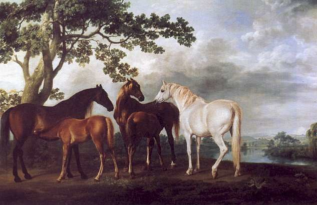 Stubbs - mares and foals in a landscape. 1763-68. Tate Britain.
