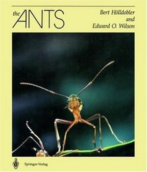 The Ants - Image: The Ants (Wilson Hölldobler book)