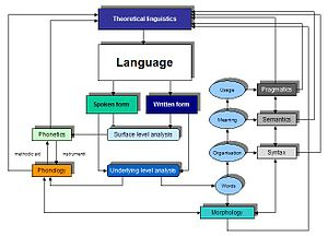 Theoretical linguistics
