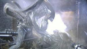 List of Alien vs  Predator characters - WikiVisually