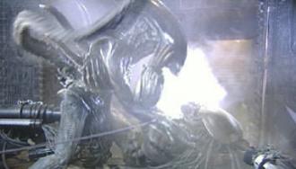 Alien vs. Predator (film) - Image: AV Pmoviefilming