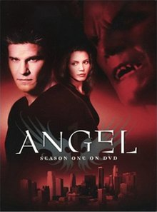 Angel DVD Season (1).jpg