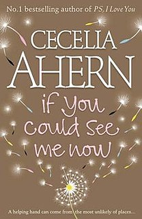 <i>If You Could See Me Now</i> (Ahern novel) book by Cecelia Ahern