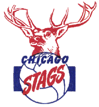 Chicago Stags - Image: Chicago Stags logo