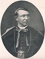 James Browne - Catholic Bishop of Ferns (1884-1917).jpg