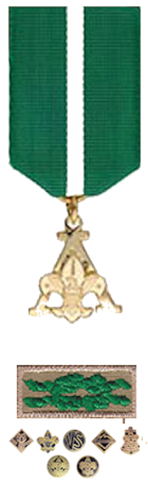 Scouter's Training Award - Medal, knot and program devices
