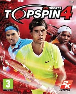 <i>Top Spin 4</i> video game