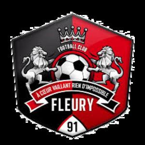 FC Fleury 91 - Image: Fc fleury 91
