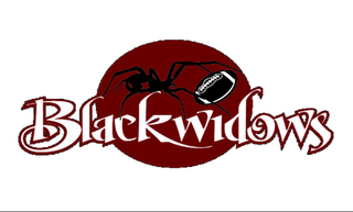 Ventura Black Widows