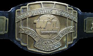 WWA Light Heavyweight Championship Professional wrestling championship