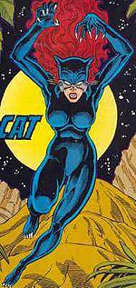Catwoman the black cat - 3 6
