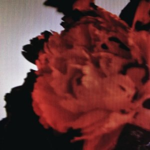 All of Me (John Legend song) - Image: Allofmejohnlegend