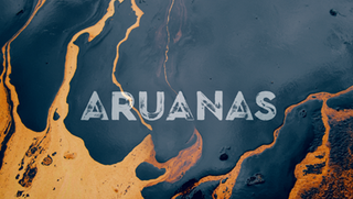<i>Aruanas</i> Brazilian television series