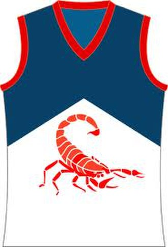 Casey Demons - Image: Casey Scorpions Jumper