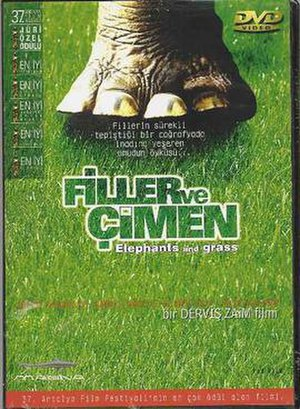 Elephants and Grass - Elephants and Grass DVD Cover