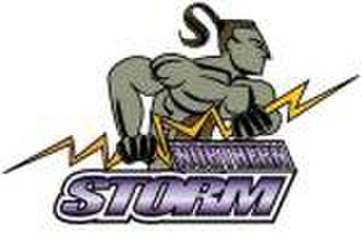 Northland rugby league team - The Northern Storm logo