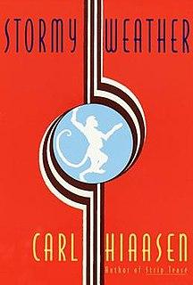 <i>Stormy Weather</i> (novel)