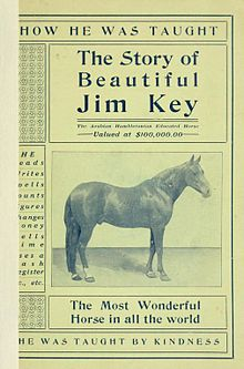 Beautifuljimkey.jpg