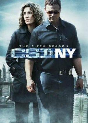 CSI: NY (season 5) - Image: CSI NY, The 5th Season