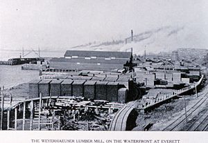 Everett, Washington -  Weyerhaeuser Lumber Mill, Everett Waterfront, c. early 1900s