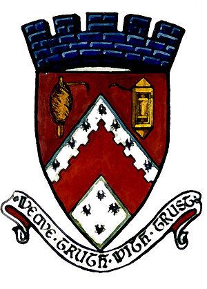 Newmilns - Image: Newmilns burgh arms
