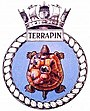 TERRAPIN badge-1-.jpg