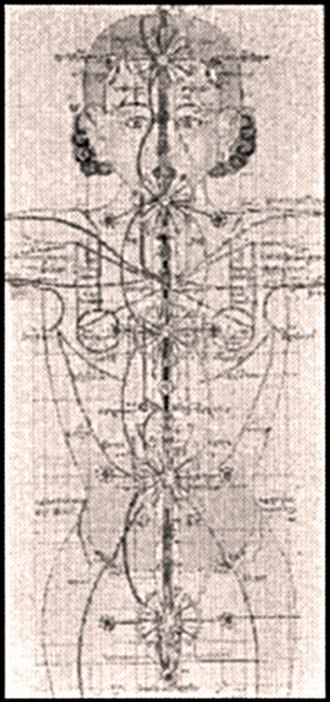 Desi Sangye Gyatso - A drawing from the Blue Beryl illustrating the Tibetan Buddhist view of the chakras (Tib. rsta-khor) and sushumna (Tib. dbu-ma). The tradition emphasizes the existence of five major chakras which are depicted possessing twenty-four spokes said to symbolize their ability to generate and link with the numerous subtle meridians or currents (Tib. rsta). The Brow end Throat centers are associated with the cosmic plane (Tib. stod), the Heart center to the human plane (Tib. bar). and the Solar and Vitality centers to the earth plane (Tb. smad).