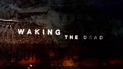Waking the Dead (TV series) - Wikipedia