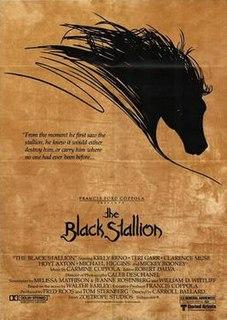 <i>The Black Stallion</i> (film)
