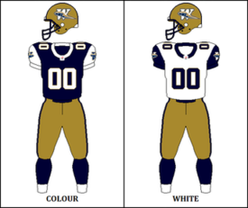 CFL WPG Jersey 2002.png