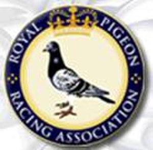 Royal Pigeon Racing Association - Image: Royalpra