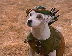 Wishbone (TV series) - Wishbone, played by Soccer the dog portraying Robin Hood