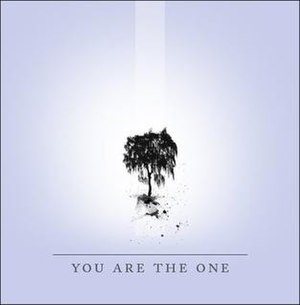 You Are the One (Shiny Toy Guns song) - Image: You Are The One