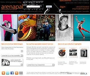Arenapal - The Arenapal website serves as a portal to the company's primary search facility and distribution outlet