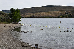 Bridgeport State Park, June 2015.jpg
