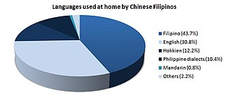 Philippine Hokkien - Languages spoken by Chinese Filipinos at home