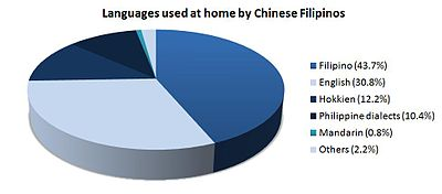 Chinese Filipino - Wikipedia