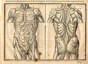 Jean Cousin the Younger - Jean Cousin the Younger's Livre de Portraiture (Paris, 1608)