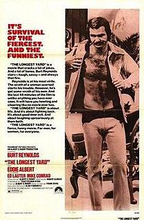 1974 film by Robert Aldrich