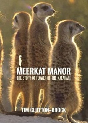 Meerkat Manor - Cover of the original UK release of Meerkat Manor: The Story of Flower of the Kalahari