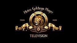 Metro-Goldwyn-Mayer Television.jpg