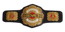 NEVER Openweight Championship.PNG