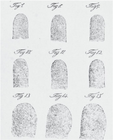 Fingerprint - Wikipedia