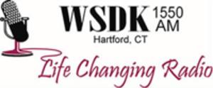 WSDK - WSDK logo