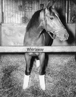 Whirlaway - Image: Whirlaway