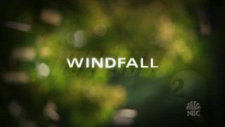 <i>Windfall</i> (TV series) television series