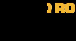 XHORO-FM - Image: XHORO Radyo Oro 94.9 logo