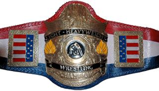 AWA World Light Heavyweight Championship Professional wrestling championship