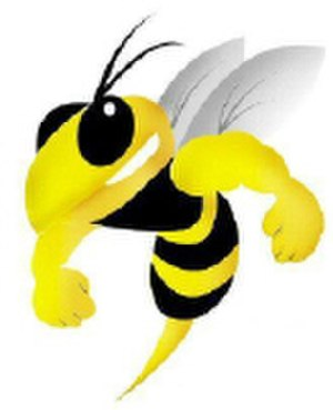 Coventry Bees - Image: Bees 2006